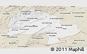 Classic Style Panoramic Map of Zabol