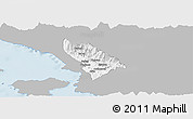 Gray Panoramic Map of Delvinë, single color outside