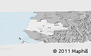 Gray Panoramic Map of Fier