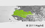 Physical Panoramic Map of Fier, desaturated