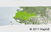 Physical Panoramic Map of Fier, semi-desaturated