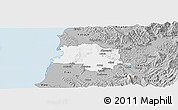 Gray Panoramic Map of Lushnjë