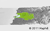 Physical Panoramic Map of Lushnjë, desaturated