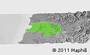 Political Panoramic Map of Lushnjë, desaturated