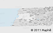 Silver Style Panoramic Map of Lushnjë