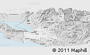 Silver Style Panoramic Map of Shkodër