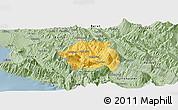 Savanna Style Panoramic Map of Tepelenë