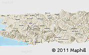Shaded Relief Panoramic Map of Tepelenë
