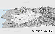 Gray Panoramic Map of Tiranë