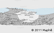 Gray Panoramic Map of Annaba