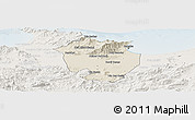 Shaded Relief Panoramic Map of Annaba, lighten