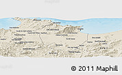 Shaded Relief Panoramic Map of Annaba