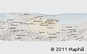 Shaded Relief Panoramic Map of Annaba, semi-desaturated