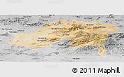 Satellite Panoramic Map of Batna, desaturated