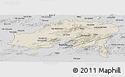 Shaded Relief Panoramic Map of Batna, desaturated