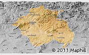 Satellite 3D Map of Constantine, desaturated