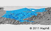 Political Panoramic Map of El Tarf, desaturated