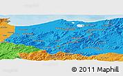 Political Panoramic Map of El Tarf