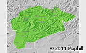 Political Map of Guelma, lighten, desaturated