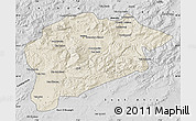 Shaded Relief Map of Guelma, desaturated