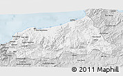 Silver Style 3D Map of Jijel