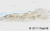 Shaded Relief Panoramic Map of Jijel, lighten