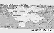 Gray Panoramic Map of Mila