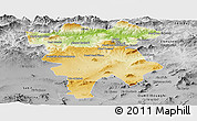 Physical Panoramic Map of Mila, desaturated