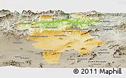 Physical Panoramic Map of Mila, semi-desaturated