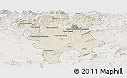 Shaded Relief Panoramic Map of Mila, lighten