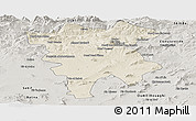Shaded Relief Panoramic Map of Mila, semi-desaturated