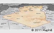 Satellite Panoramic Map of Algeria, desaturated
