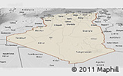 Shaded Relief Panoramic Map of Algeria, desaturated