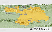 Savanna Style Panoramic Map of Setif