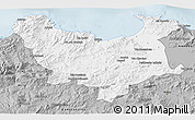 Gray 3D Map of Skikda