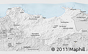 Silver Style 3D Map of Skikda