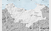 Gray Map of Skikda