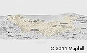 Shaded Relief Panoramic Map of Skikda, desaturated