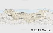 Shaded Relief Panoramic Map of Skikda, lighten