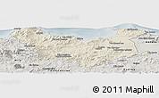 Shaded Relief Panoramic Map of Skikda, semi-desaturated