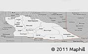 Gray Panoramic Map of Cuando Cubango