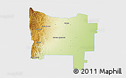 Physical 3D Map of Colon, single color outside