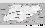 Gray Panoramic Map of Corrientes