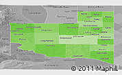 Political Shades Panoramic Map of La Pampa, desaturated