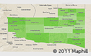 Political Shades Panoramic Map of La Pampa, shaded relief outside