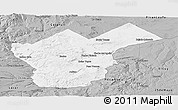 Gray Panoramic Map of Collon Cura