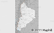 Gray Map of Neuquen