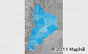 Political Shades Map of Neuquen, desaturated