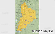 Savanna Style Map of Neuquen