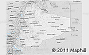 Silver Style Panoramic Map of Neuquen